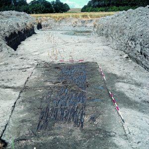 Lisbeth Pedersen studerer ål har bl.a. udgravet en 5.000 år gammel ålegård i Halsskov ved Storebælt
